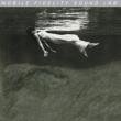 Undercurrent (高音質盤/140グラムアナログレコード/Mobile Fidelity)