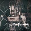THE BEGINNING 【通常盤D】
