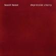 Depression Cherry (アナログレコード)