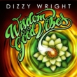 Wisdom & Good Vibes Ep