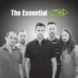 Essential 311