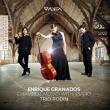 Piano Trio, Violin Sonata, Etc-chamber Music With Piano: Trio Rodin