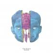 Reverie EP (10インチシングルレコード)