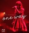 藤田麻衣子 LIVE TOUR 2014-2015〜one way〜