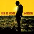 Anthology (2LP)(180グラム重量盤)