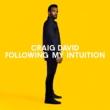 Following My Intuition (2枚組アナログレコード)