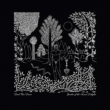 Garden Of The Arcane Delights / Peel Sessions