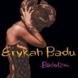 Baduizm (2枚組アナログレコード)