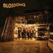 Blossoms 【JAPAN VERSION】(+DVD)