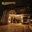 Blossoms (Lp / No Foil Version)