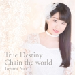 True Destiny/Chain The World