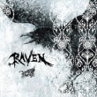 RAVEN 【初回限定盤 B-TYPE】(+DVD)