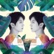 1st Mini Album: DO DISTURB 【通常盤】