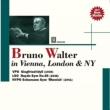 ワーグナー:ジークフリート牧歌、ハイドン:交響曲第86番、シューマン:交響曲第3番、他 ワルター&ウィーン・フィル、ロンドン響、ニューヨーク・フィル