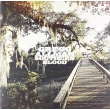 Southern Blood (アナログレコード/8thアルバム)