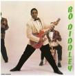Bo Diddley (180グラム重量盤レコード/DOL)