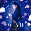 WISH 【初回生産限定盤】 (+DVD)