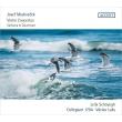ヴァイオリン協奏曲集 レイラ・シャイエ、ヴァーツラフ・ルクス&コレギウム1704