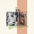 Shuffletown (180グラム重量盤レコード)