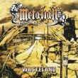 Wasteland (アナログレコード)