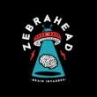 Brain Invaders (アナログレコード)