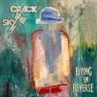 Living In Reverse