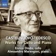 チェロとピアノのための作品集 エンリコ・ディンド、アレッサンドロ・マランゴーニ