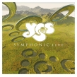 Symphonic Live -Live In Amsterdam 2001 (2枚組アナログレコード)