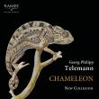 『カメレオン〜テレマン:室内楽作品集』 ニュー・コレギウム