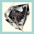 bird 20th Anniversary Best