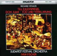 Till, Don Juan, Tod: Fischer / Budapest Festival.o