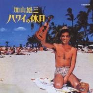 ハワイの休日