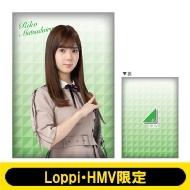 ビッグクッション (松平璃子)【Loppi・HMV限定】