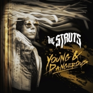 Young & Dangerous (Japan Version)