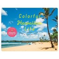 Aosola Images/Colorful Hawaiian Life カレンダー2020 翔泳社カレンダー