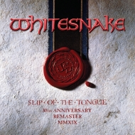 Slip Of The Tongue (2枚組アナログレコード/2019 Remaster)