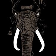 Don' t Buy Ivory Anymore! -Music Of Henri Texier
