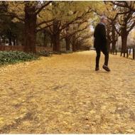 或る秋の日 【受注生産限定盤】(180グラム重量盤レコード)