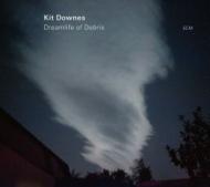 Dreamlife Of Debris (180グラム重量盤レコード)