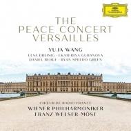 ヴェルサイユ平和コンサート フランツ・ヴェルザー=メスト&ウィーン・フィル、ユジャ・ワン