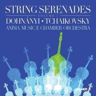 (String Orchestra)Dohnanyi Serenade, Tchaikovsky Serenade : Anima Musicae Chamber Orchestra