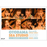 OTODAMA SEA STUDIO 2019 supported by POCARI SWEAT J=J Summer Special