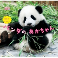 ほんとうのおおきさでみてみよう!パンダのあかちゃん おおきなかがく