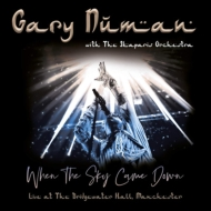 When The Sky Came Down (2CD+DVD)