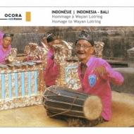Indonesia -Bali: Homage To Wayan Lotring