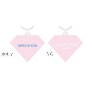 ラバーキーリング (SVT)/ SEVENTEEN WORLD TOUR <ODE TO YOU> IN JAPAN