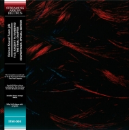 イースII Ys II: Ancient Ys Vanished -The Final Chapter オリジナルサウンドトラック (カラーヴァイナル仕様/2枚組180g重量盤レコード)