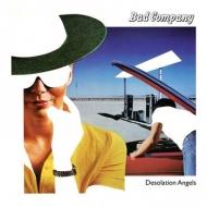 Desolation Angels (40周年記念盤)(2枚組アナログレコード)
