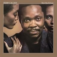 Turn You To Love (180グラム重量盤レコード/Speakers Corner)