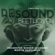 交響曲第5番『運命』、第6番『田園』 マルティン・ハーゼルベック&ウィーン・アカデミー管弦楽団